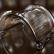 派滋ファーウェイ栄光思う存分遊ぶ8 C携帯ケース投げ防止8 c保護カバー全カバーシリコンシェル透明